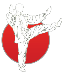 Home - Taoist Arts Organisation - Chinese Martial Arts