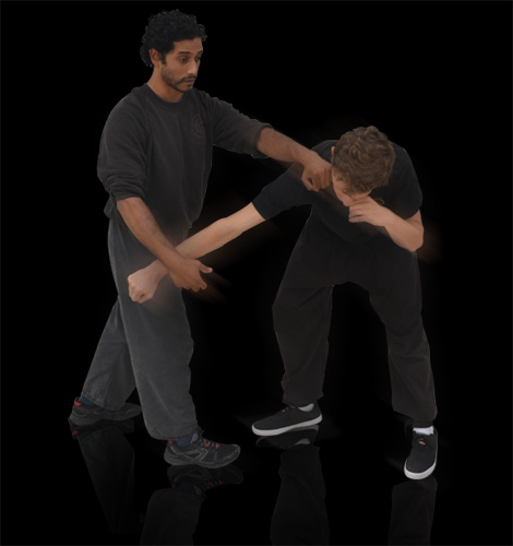 Chinese Martial Arts - Arm Lock Move
